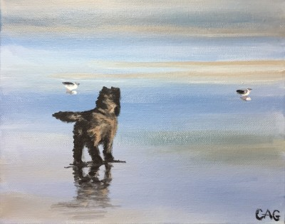 Small dog on wet sand with two gulls