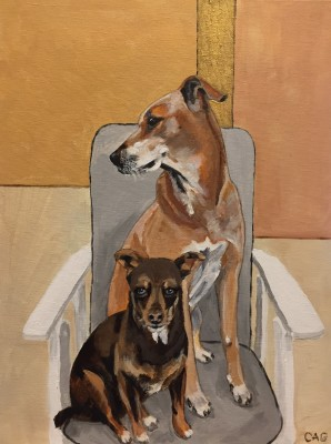 Portrait of two dogs sitting in a chair
