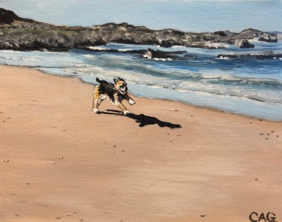 Small dog running on sandy beach with sea and rocks behind